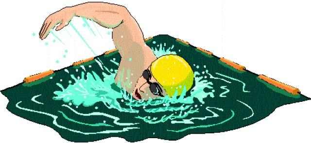 Znalezione obrazy dla zapytania karta pływacka